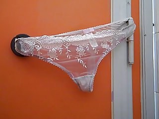 Panties left in a public loo in Bridport