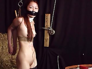 Asian babe bound and punished