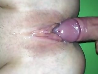 Hindu Stud Breeding Austrailian Tight Young Slut In Sydney.m