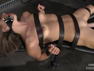 Tied Down Mikayla Hendrix Fuck Machine