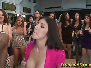 Party hotties sucking dick while the others cheer them up