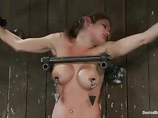 Felony destroyed by sybian